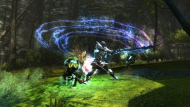 Photo of Kingdoms of Amalur Re-Reckoning: ¿Puedes vincularte con tus enemigos? Contestado