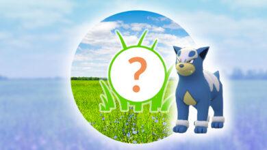 Pokémon GO: Lección de Spotlight hoy con Hunduster - Parece enorme
