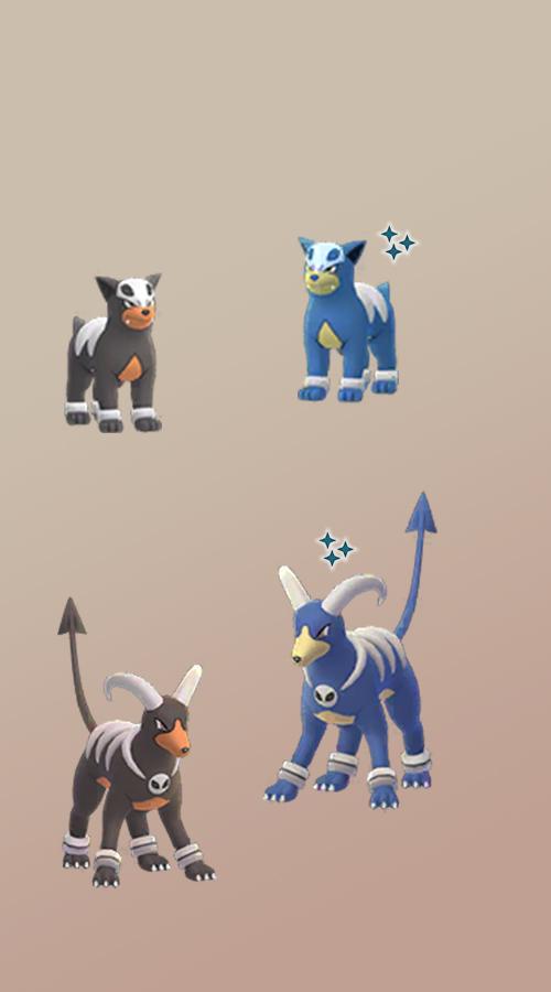 Patrón de perro brillante de Pokémon GO