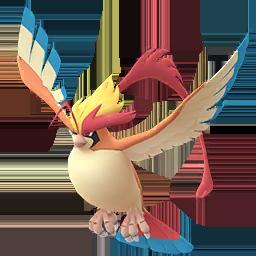 Mega Pigeon Boss Pokémon GO
