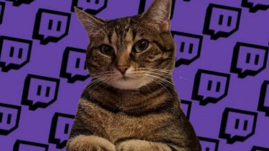 """Twitch termina la """"prueba"""" con publicidad en la transmisión. Gracias por todo el odio."""
