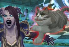 Photo of WoW: Desde hace un año, los jugadores han estado desesperados con este rompecabezas de gatos.