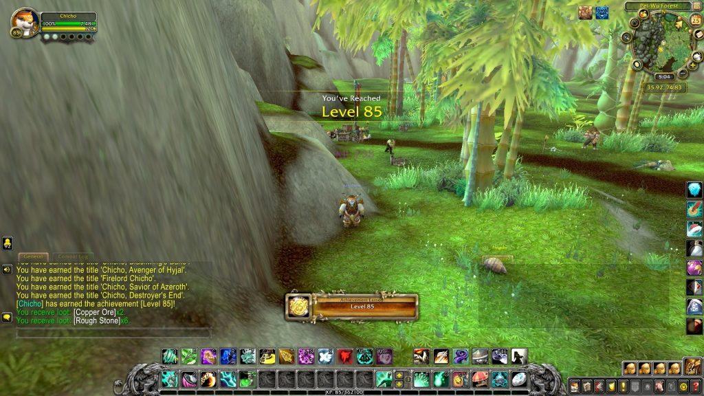 WoW Chicho Nivel 85 Pandaren