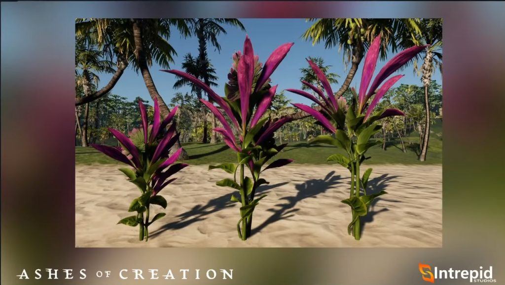 Cenizas de plantas de creación