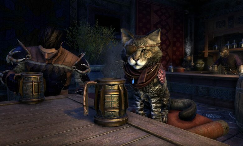 ESO traerá pronto al gato más borracho de Tamriel a su casa