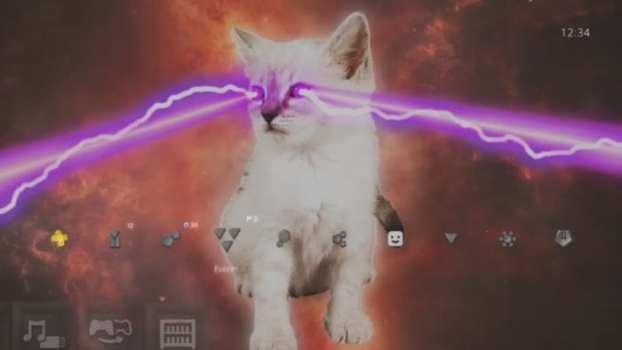 Tema dinámico del gato láser