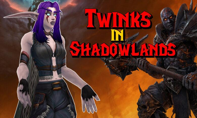 WoW: Twinks in Shadowlands - ¿Qué tan bien puedes dibujar personajes?