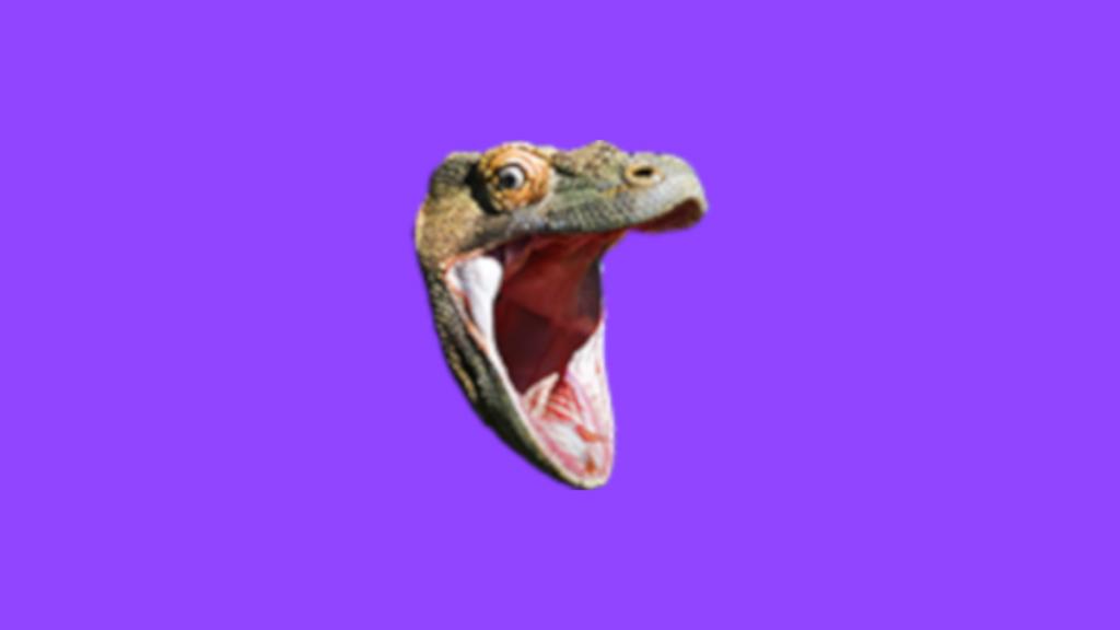 komodohype pogchamp