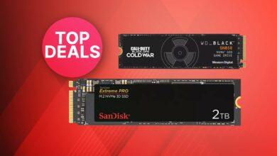 OTTO ofrece: SSD súper rápidos de SanDisk & WD al mejor precio