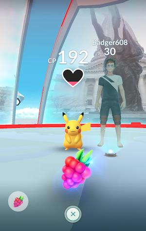 Pokémon GO Arena Berry