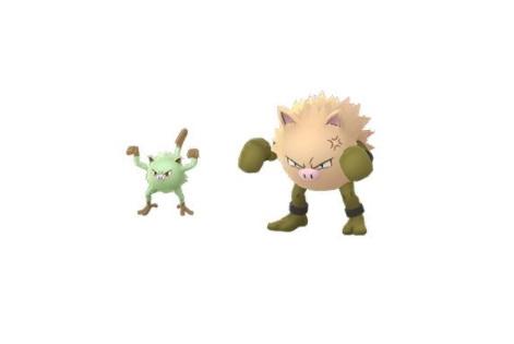 Shiny Menki Pokemon GO