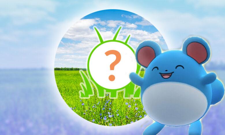 Pokémon GO: lección de Spotlight hoy con Marill y más polvo de estrellas para ti