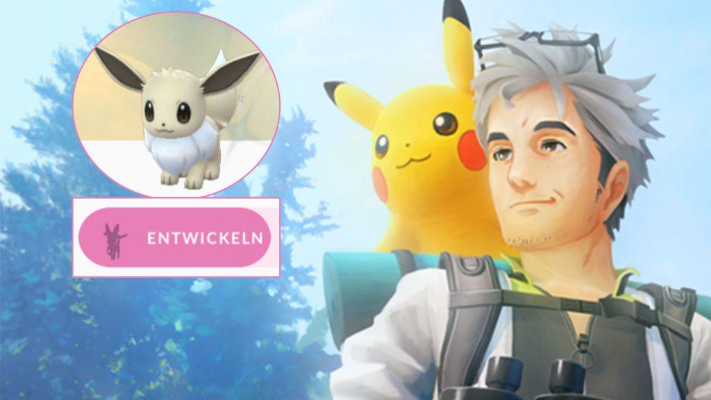Pokémon GO Eevee Evolve Feelinara Título Willow