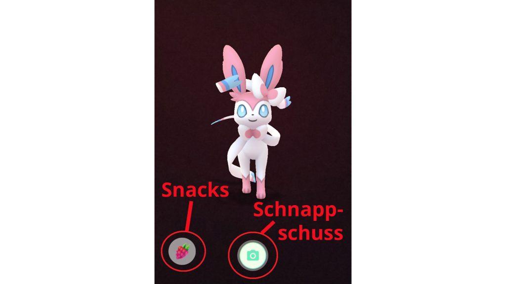 Pokémon GO - compañero de explicación