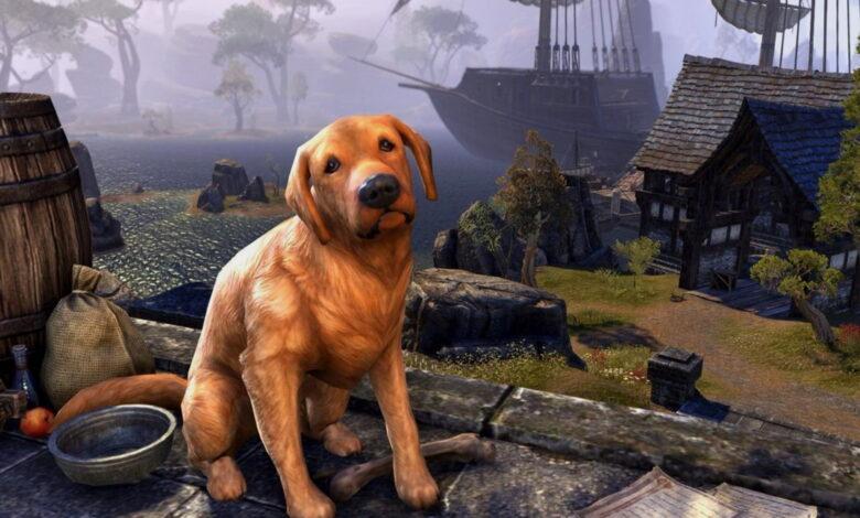 """ESO: Un error curioso convierte repentinamente a los jugadores en perros y miles celebran el """"error"""""""