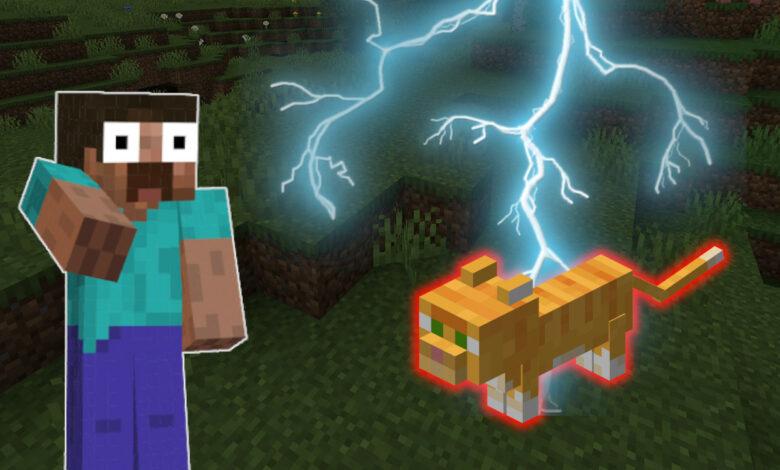 Minecraft: ¿cuánta mala suerte puedes tener? Los rayos asan al gato