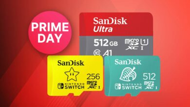 Oferta Amazon Prime Day: tarjetas de memoria Nintendo Switch al mejor precio