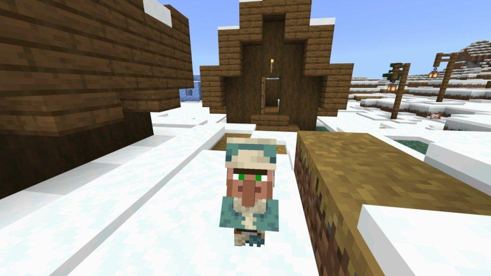 Baby Minecraft 1.17 aldeano fuera de la casa