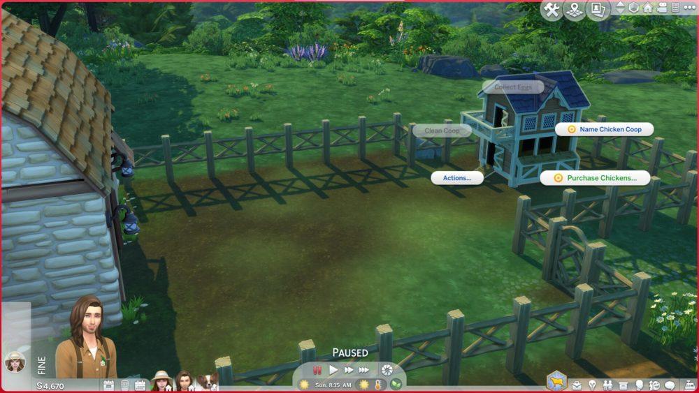Sims 4 Compra pollos