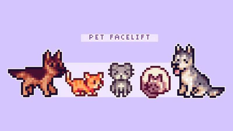 estiramiento facial para mascotas